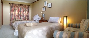 Forest Walks Lodge twin room with accessible bathroom, near Deloraine in northern Tasmania